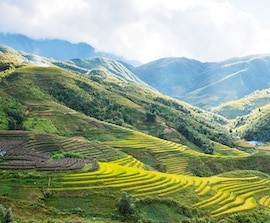 seværdigheder i vietnam