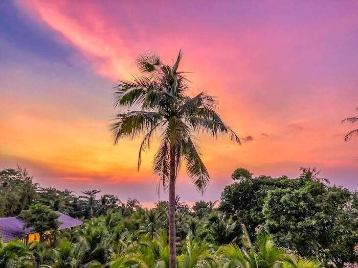 tropeø-vietnam