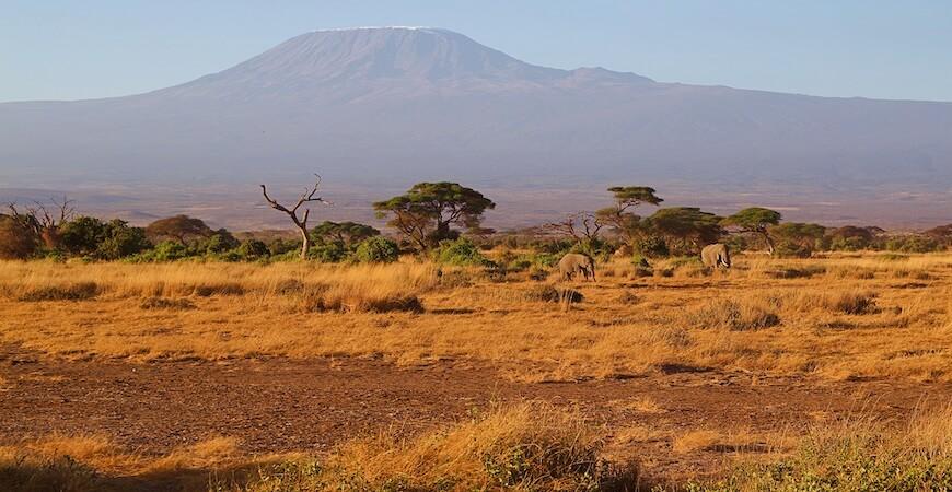Kilimanjaro Tanzania Afrika