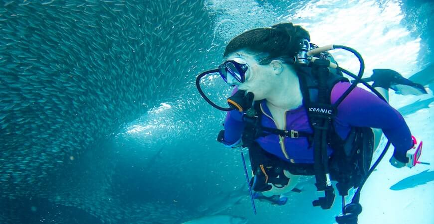 jomfruøerne dykning
